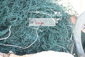 good nets IMG_8328